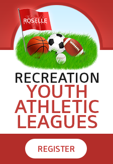 Recreational Leagues